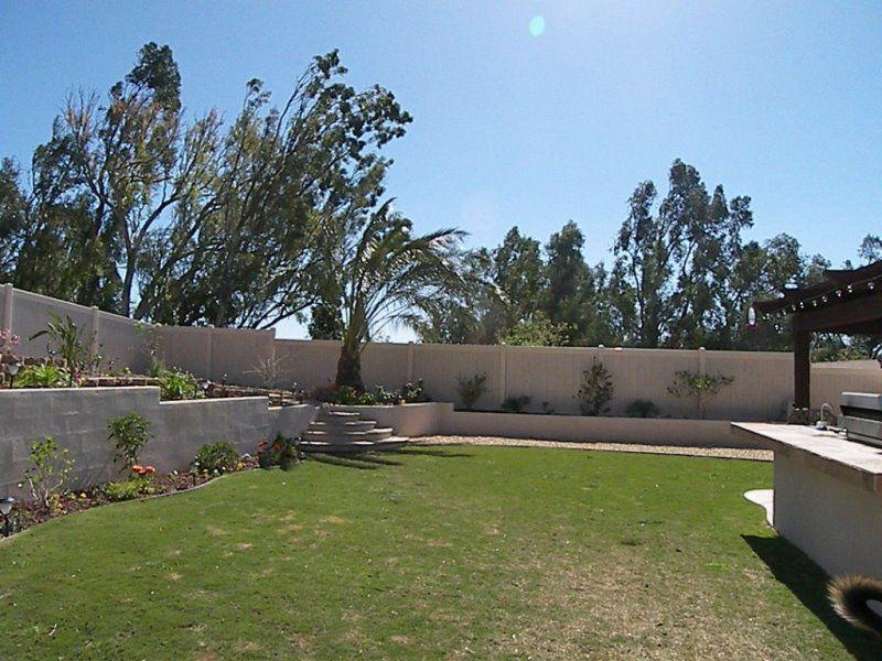 Backyard 06