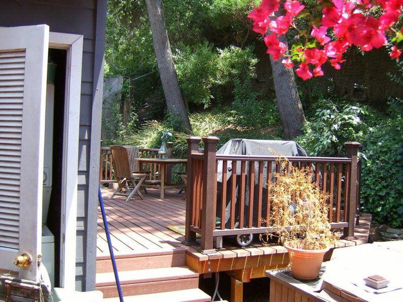 Backyard 13